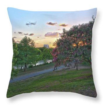 Texas Landscape5 Throw Pillow