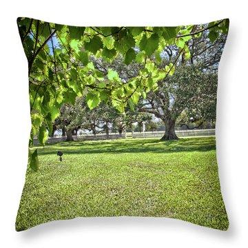 Texas Landscape7 Throw Pillow