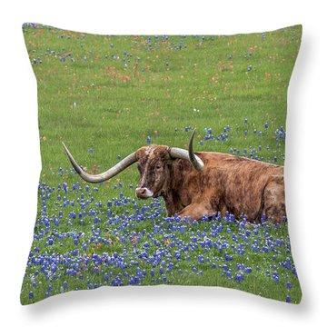 Texas Longhorn And Bluebonnets Throw Pillow