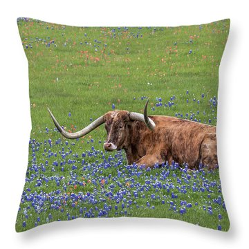 Texas Longhorn And Bluebonnets Throw Pillow