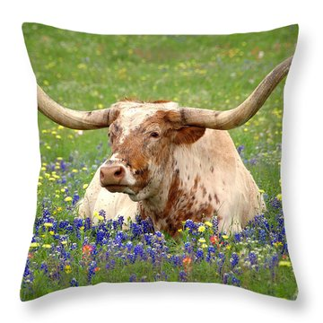 Texas Longhorn In Bluebonnets Throw Pillow by Jon Holiday
