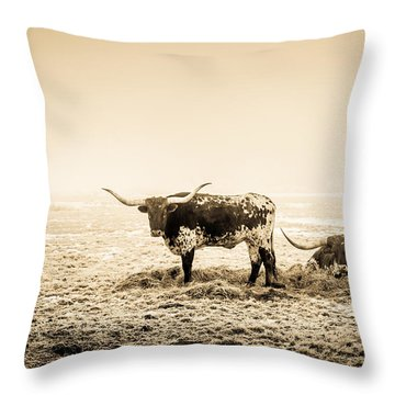 Texas Longhorns Throw Pillow