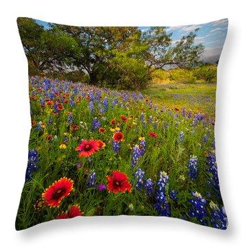 Texas Paradise Throw Pillow