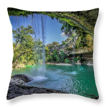 Texas Paradise Throw Pillow