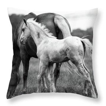 Texas Ranch  Throw Pillow
