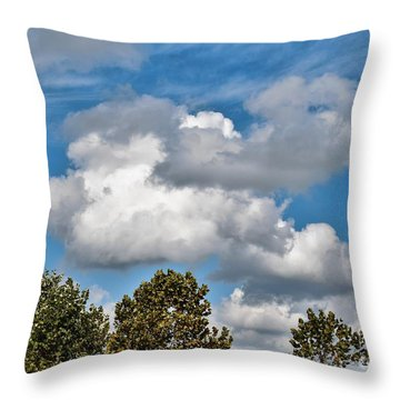 Throw Pillow featuring the photograph Texas - Reach For The Sky.   by Ray Shrewsberry