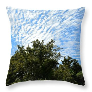 Throw Pillow featuring the photograph Texas Scene - Midday  by Ray Shrewsberry