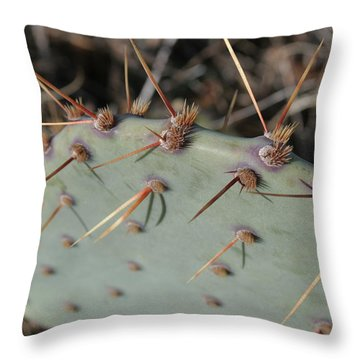 Throw Pillow featuring the photograph Texas Spikes by Laddie Halupa