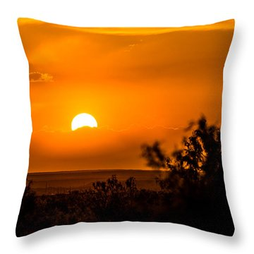 Texas Tangerine Throw Pillow