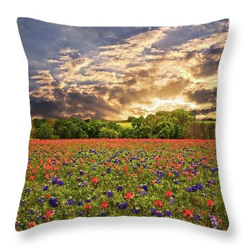 Texas Wildflowers Under Sunset Skies Throw Pillow