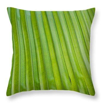 Texture 330 Throw Pillow