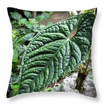 Texture Of A Leaf Throw Pillow