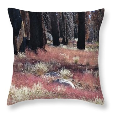 Texture Of Recovery Throw Pillow