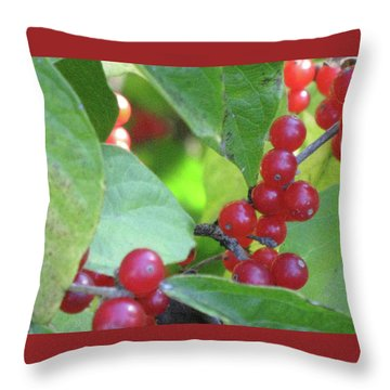 Textured Berries Throw Pillow by Michele Wilson