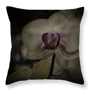 Throw Pillow featuring the photograph Textured Flower by Ryan Photography