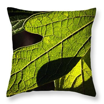 Textured Glow Throw Pillow by Christopher Holmes