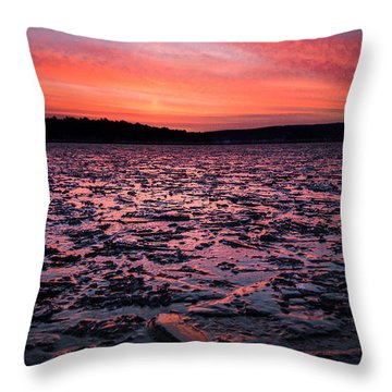 Textured Ice Throw Pillow