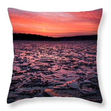 Textured Ice Throw Pillow