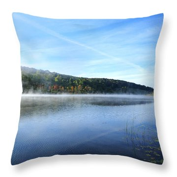 Textures Throw Pillow by Tom Heeter