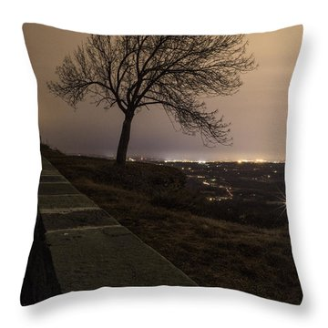Thacher Park Twilight Throw Pillow
