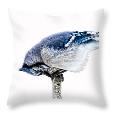 Thank You For This Food Throw Pillow
