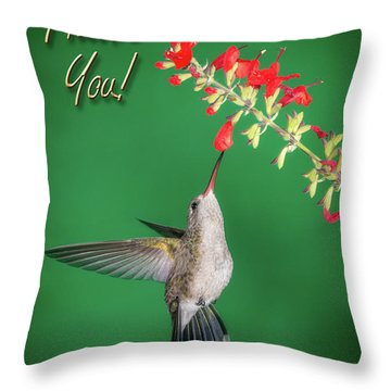 Thank You - Looking Up Throw Pillow