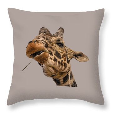 Thank You Throw Pillow by Mark Myhaver