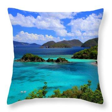Thank You St. John Usvi Throw Pillow