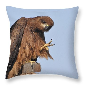Thanks To All Nature Lovers  Throw Pillow