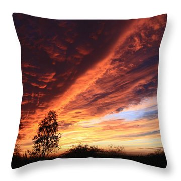 Thanksgiving Sunset Throw Pillow by Gary Kaylor