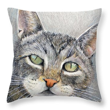 That Cat Throw Pillow by Tim Ernst