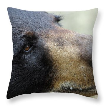 That Face Throw Pillow by Karol Livote