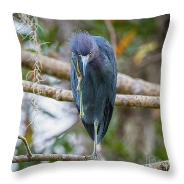 That Feels Great - Little Blue Heron Throw Pillow