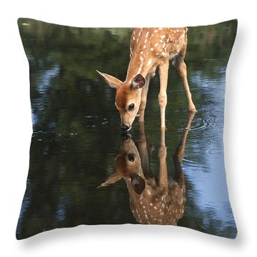 That Must Be Me Throw Pillow by Sandra Bronstein