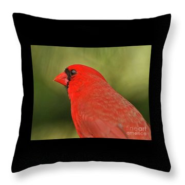 Throw Pillow featuring the photograph That Smiling Face by Kerri Farley