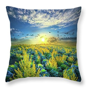 That Voices Never Shared Throw Pillow by Phil Koch