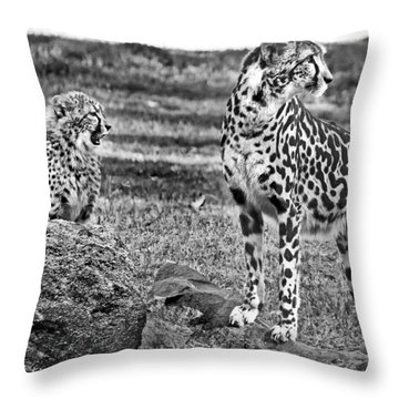 Thats A Yawn Throw Pillow