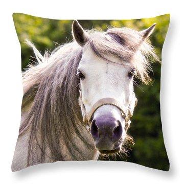 That's Lulu Throw Pillow