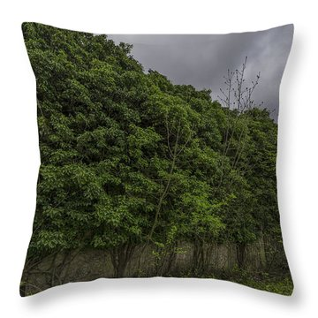 Throw Pillow featuring the photograph The Abandoned House Covered By The Leaves by Enrico Pelos