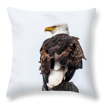 The Alert Throw Pillow by Yeates Photography