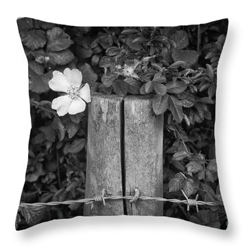 The Allotment Project - Dog Rose Throw Pillow