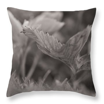 The Allotment Project - Strawberry Plant Throw Pillow