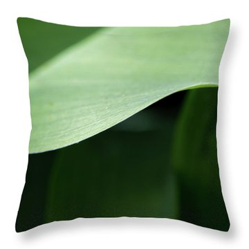 The Allure Of A Curve - Throw Pillow