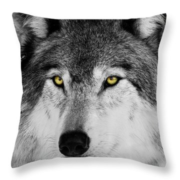 Throw Pillow featuring the photograph The Alpha Portrait by Mircea Costina Photography