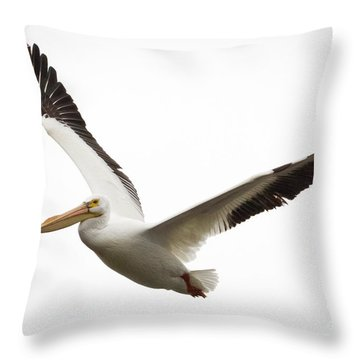 The Amazing American White Pelican Throw Pillow by Ricky L Jones