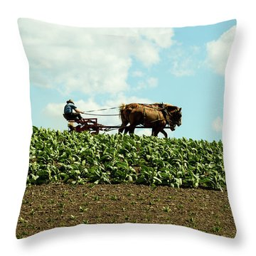 The Amish Farmer With Horses In Tobacco Field Throw Pillow
