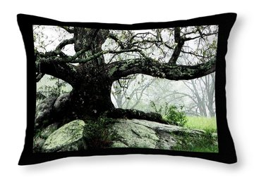 The Ancient One Throw Pillow by Angela Davies