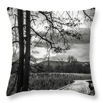 Throw Pillow featuring the photograph The Appalachian Trail by Eduard Moldoveanu