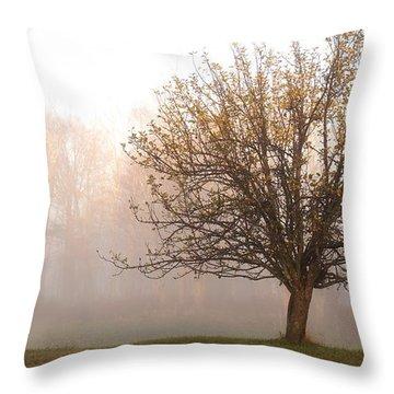 The Apple Tree Throw Pillow