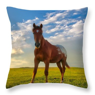 The Appy Throw Pillow